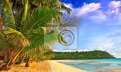 Sticker Tropics