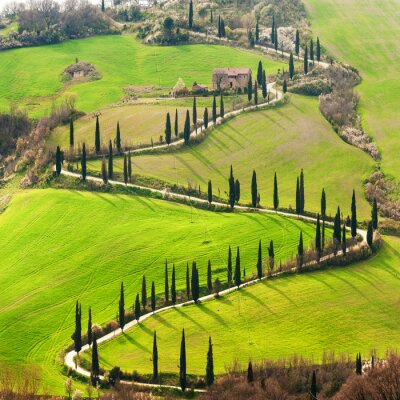 Sticker Tuscan way home in the shape of S