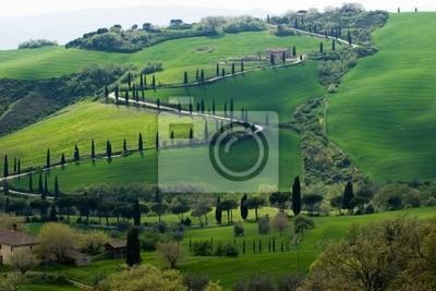 tuscany green hills