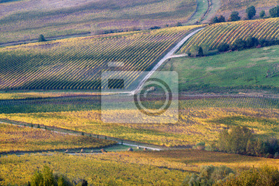 tuscany landscape in early fall