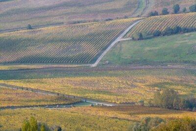 tuscany landscape near siena