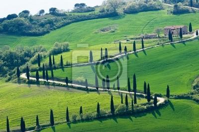 tuscany nature