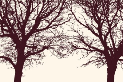 Sticker two trees