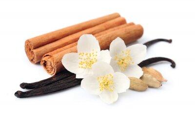 Sticker Vanilla sticks