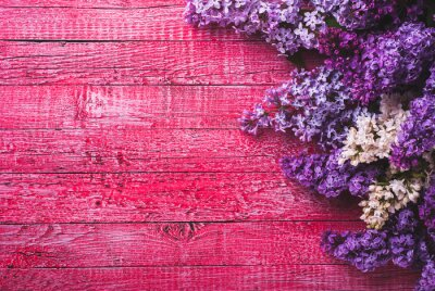 Various lilac_6