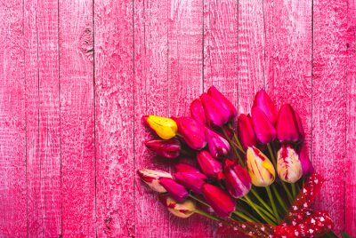 Various of colorful tulips_1