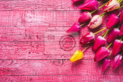 Various of colorful tulips_6