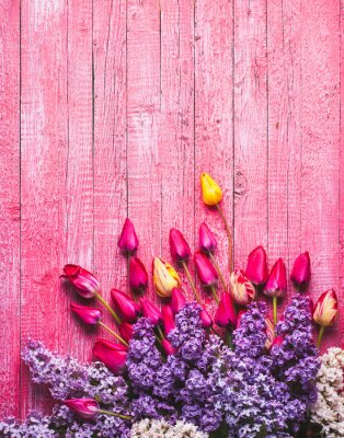 Various tulips and lilac_3