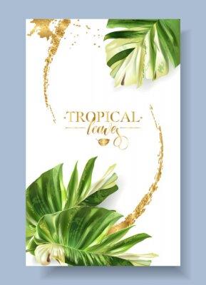 Sticker Vector color banner of alocasia tropic leaf