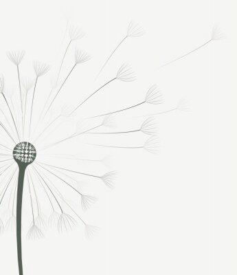 Sticker Vector dandelion flower
