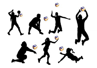 Sticker vector  illustration graphic background volleyball players sport