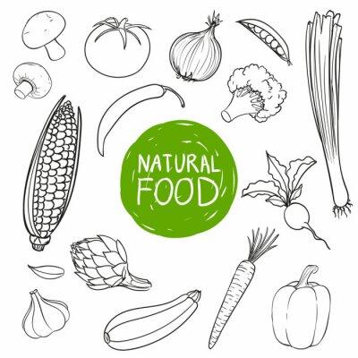 Sticker Vector Illustration of Hand Drawn Vegetables