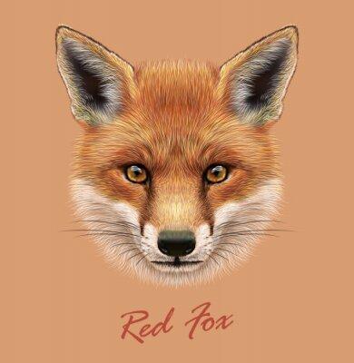 Sticker Vector Illustrative Portrait of a Red Fox