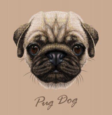 Sticker Vector Illustrative Portrait of Pug Dog.