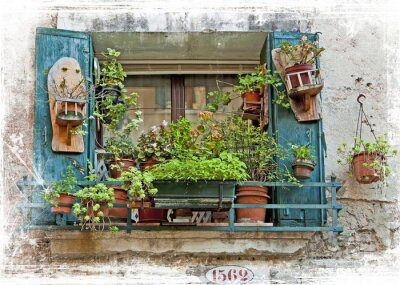 Sticker Venice, old small windows with plants