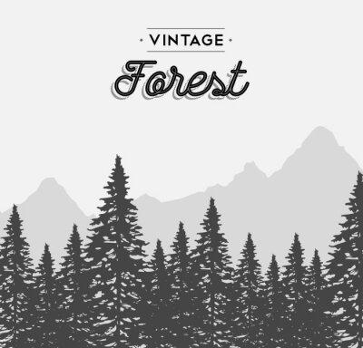 Sticker Vintage forest text label on winter tree landscape