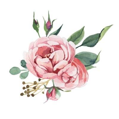 Sticker Watercolor bouquet of peony and blosom flowers isolate in white background for wedding, invitation, valentine cards and prints