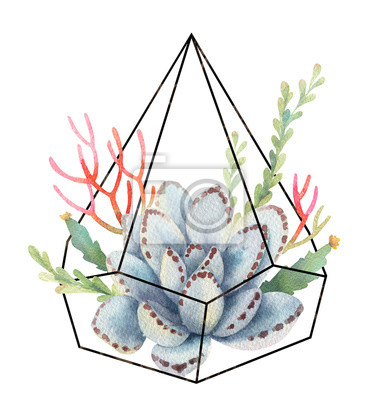 Sticker Watercolor composition of cacti and succulents in terrariums geometric florariume isolated on white background.