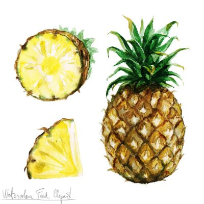 Sticker Watercolor Food Clipart - Pineapple