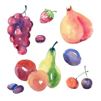 Sticker watercolor fruit set