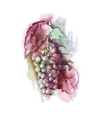 Sticker Watercolor Grape