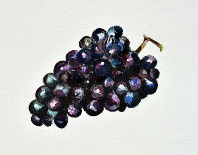 Sticker watercolor grapes