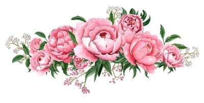 Sticker Watercolor illustration of pink peony flower blossom