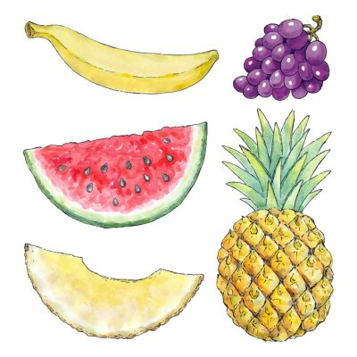 Sticker Watercolor picture of different fruits