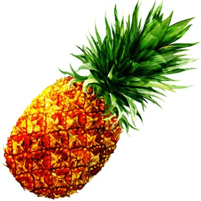 Sticker watercolor pineapple isolated