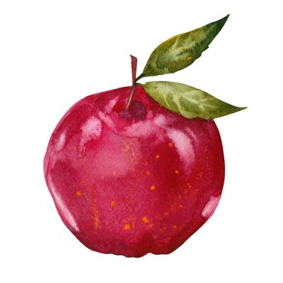 Sticker watercolor red apple