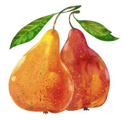 Sticker Watercolor tasty pears hand drawn illustration