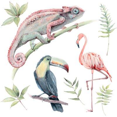 Sticker watercolor tropical animals set.