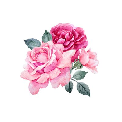 Sticker Watercolor vector roses composition