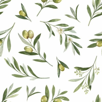 Sticker Watercolor vector seamless pattern of olive branches and leaves.