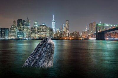 Sticker whale in manhattan river at night