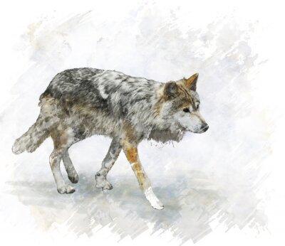 Sticker Wolf Watercolor