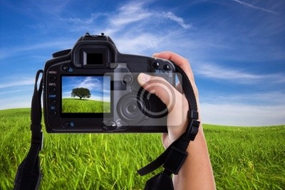 Woman photographing landscape with digital photo camera