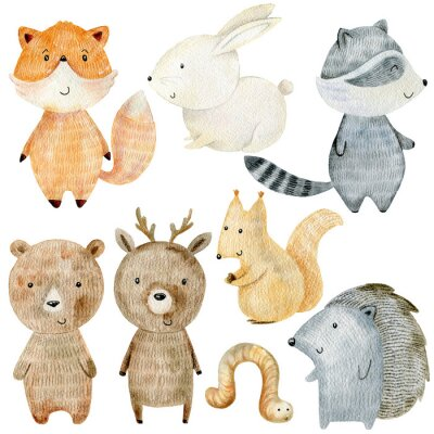 Sticker Woodland Animals Set