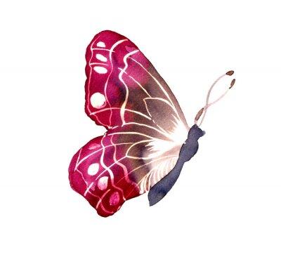 Sticker 바틱 염색기법으로 그려진 나비