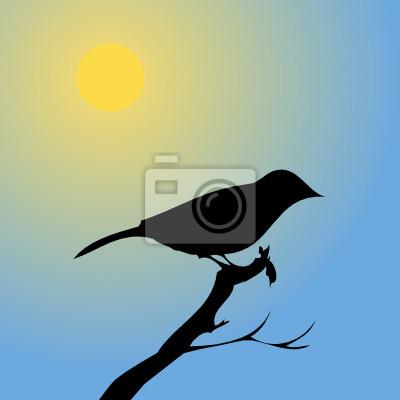 Птица на закате