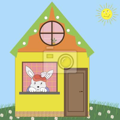 Заяц дома