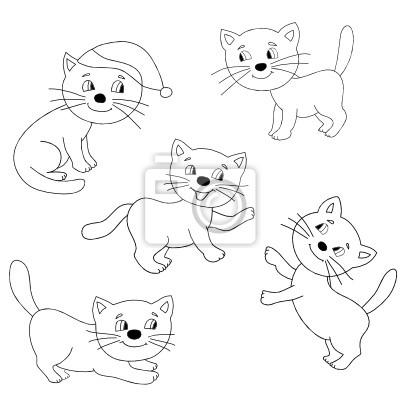Изображение  котов
