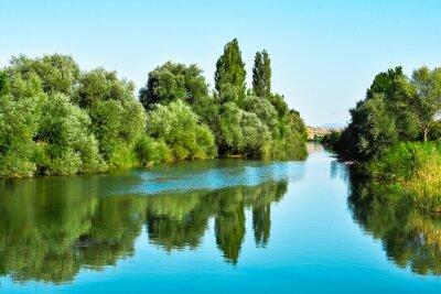 Sticker nehir suları ve ağaçların yansıması